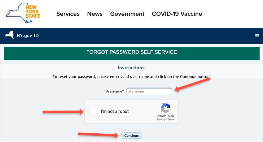 """""""NY.gov ID forgot forgot password"""""""